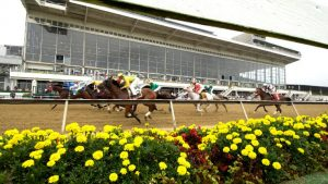 Preakness Betting at an Online Sportsbook